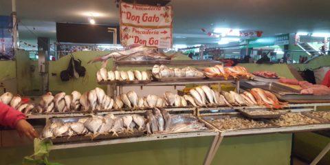 amerique latine amerique du sud marché latacunga